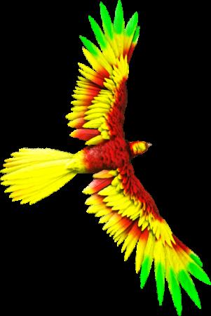 argycolortoken